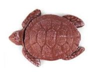 Red Whitewashed Cast Iron Decorative Turtle Paperweight 4